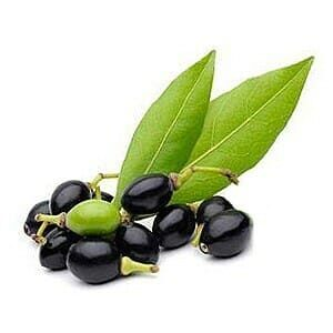 Sapone di Aleppo ricetta certificato biologico Sarjilla - olio di alloro e olio di oliva
